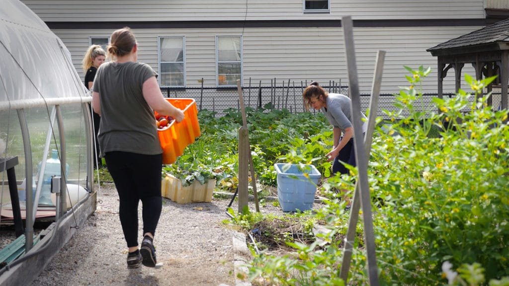 Women volunteering at local farm